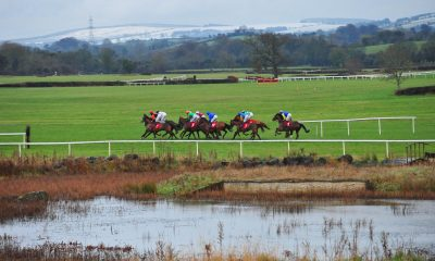 Runners and riders at Punchestown Racecourse