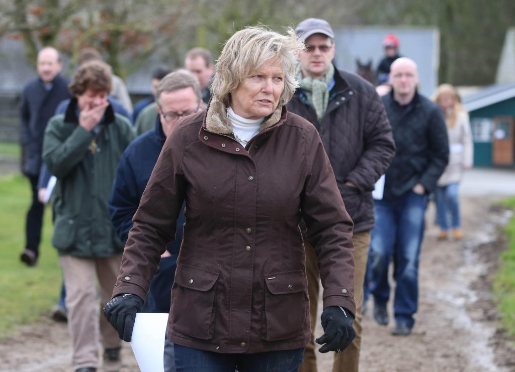 Visit to Jessica Harrington Stable Visit - Commonstown Racing Stables
