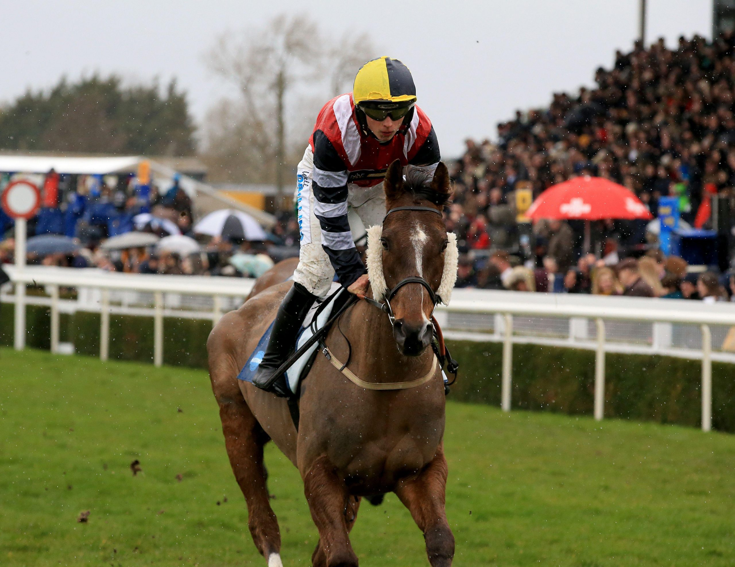 2EM3PP7 File photo dated 16-03-2019 of Potters Corner ridden by James Bowen during the Marstons 61 Deep Midlands Grand National race at Uttoxeter Racecourse. Issue date: Wednesday February 24, 2021.