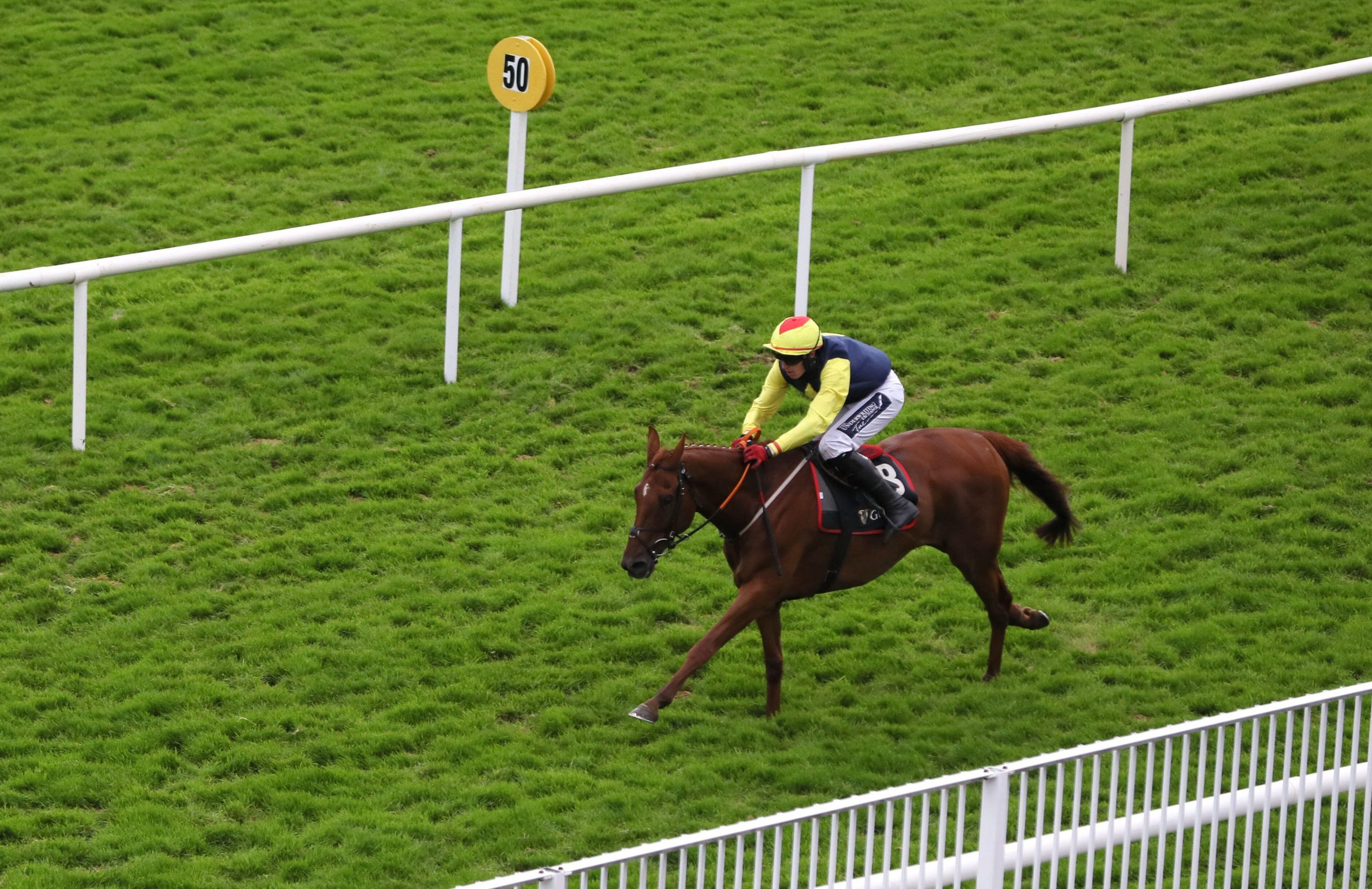 The Storyteller ridden by Keith Donoghue on their way to winning the Arthur Guinness Chase during day five of the 2020 Galway Races Summer Festival at Galway Racecourse.