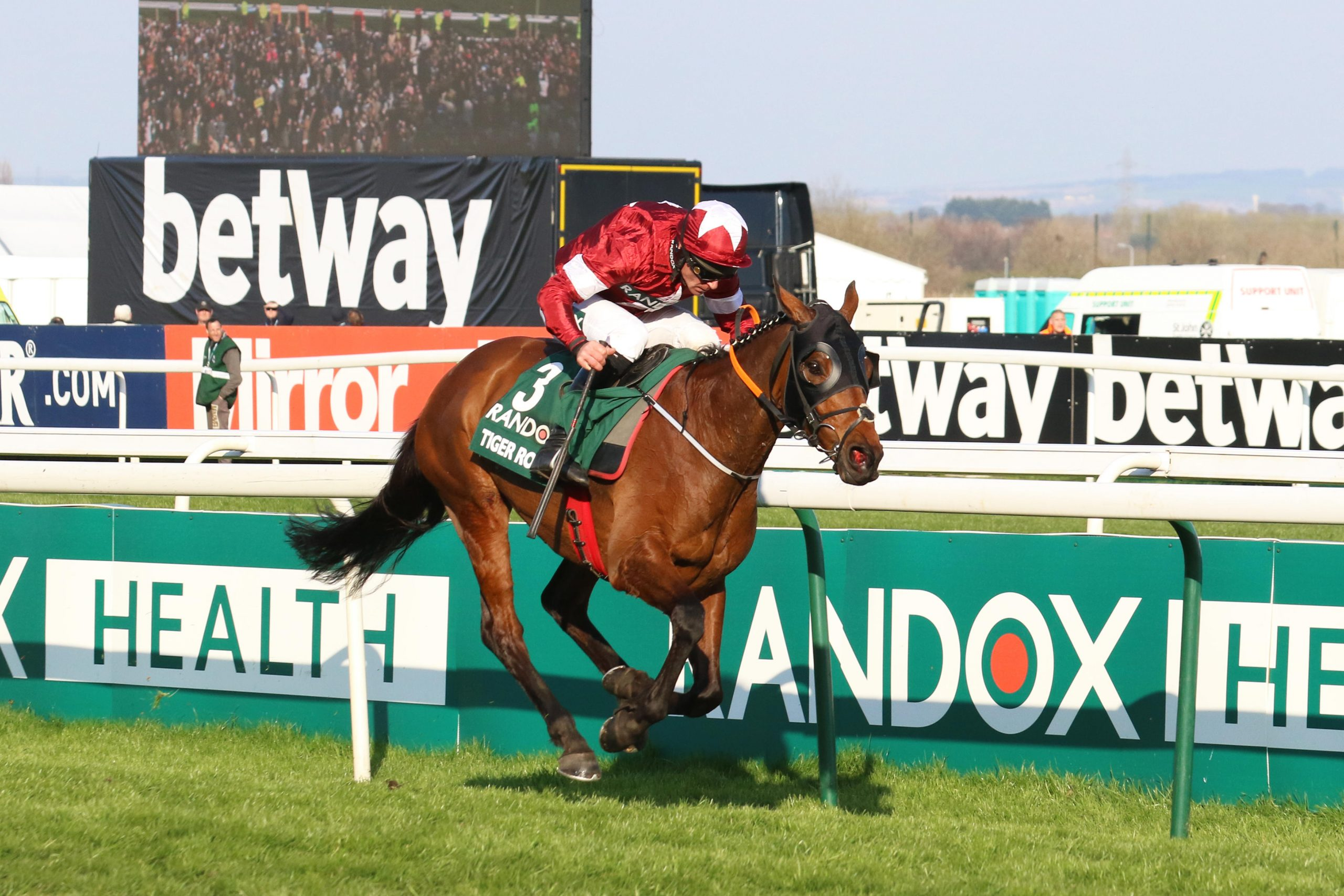 T3509E AINTREE, Liverpool, UK. 6th Apr, 2019. Tiger Roll winner of the 2019 Randox Grand National ridden by D N Russell. He becomes the first horse to since Red Rum 45 years ago to win the hurdles event race back-to-back. 40 runners, 30 fences and more than four-and-a-quarter miles, the National is the ultimate test for horses and riders.