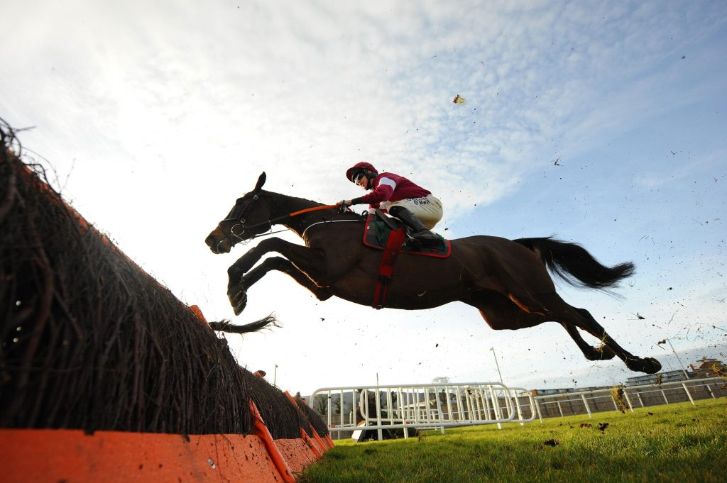 Abacadabras jumps the final fence at Leopardstown