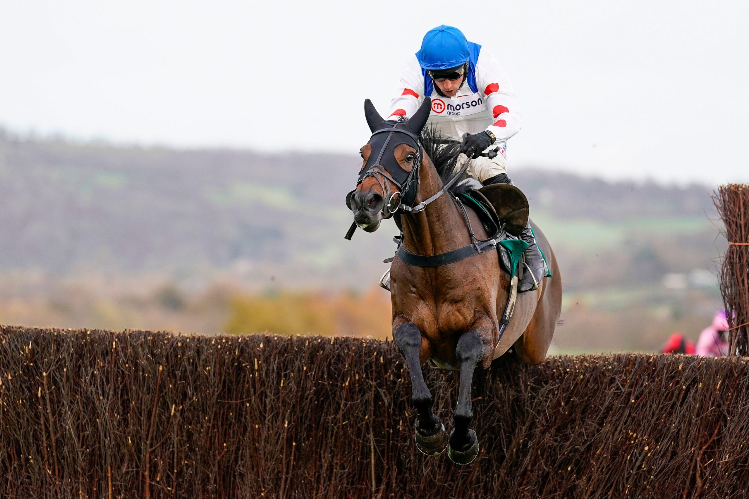 Harry Skelton and Protektorat clear the last to win The SSS Super Alloys Supports Racing Welfare Novices' Chase at Cheltenham Racecourse