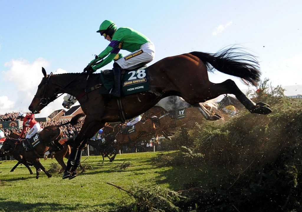 Mon Mome ridden by jockey Aidan Coleman during The John Smith's Grand National Steeple Chase (Handicap) (Class 1) (Grade 3)