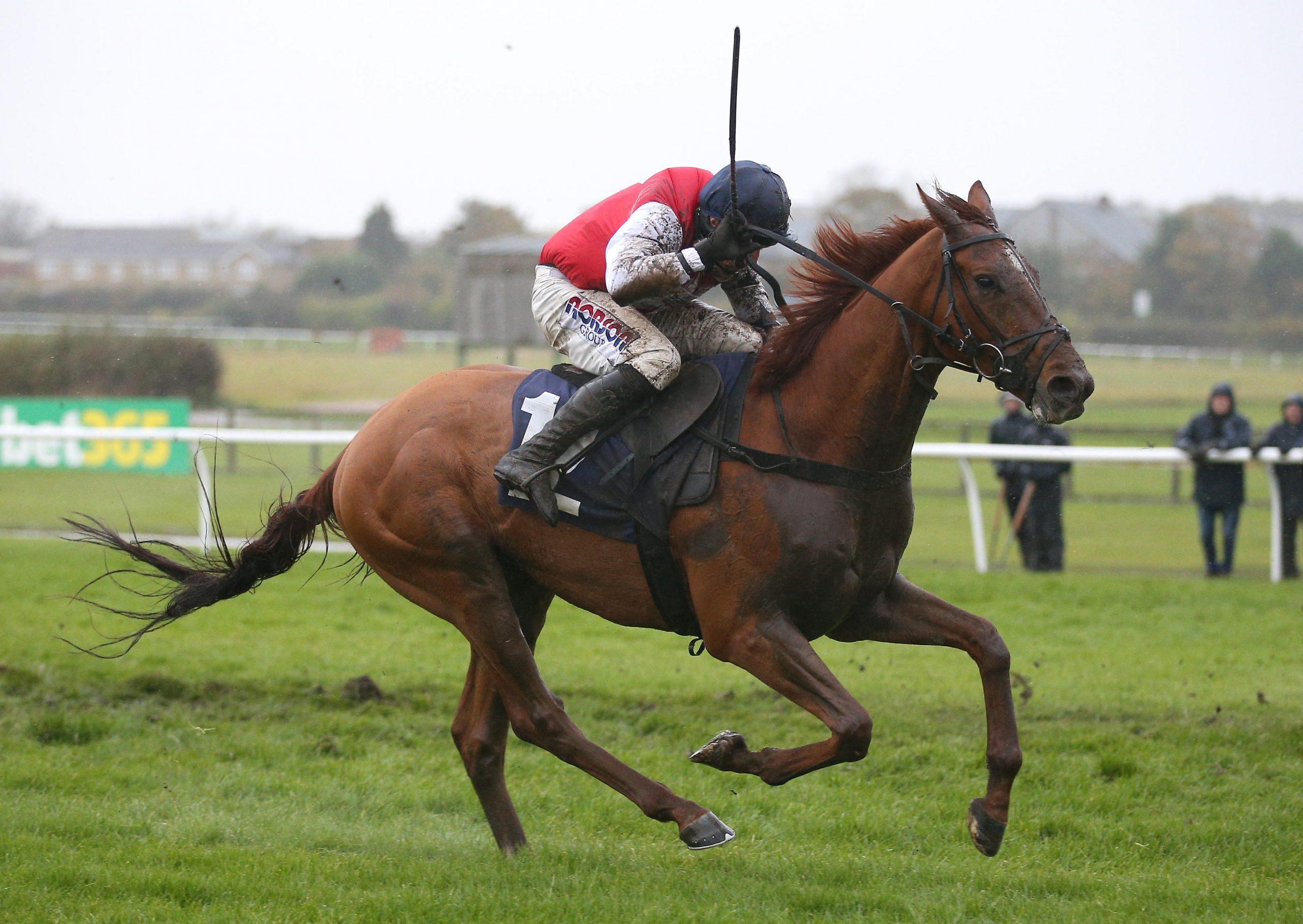 Proschema ridden by Harry Skelton wins The bet365 Novices Hurdle Race during day two of the Bet365 meeting at Wetherby Racecourse.