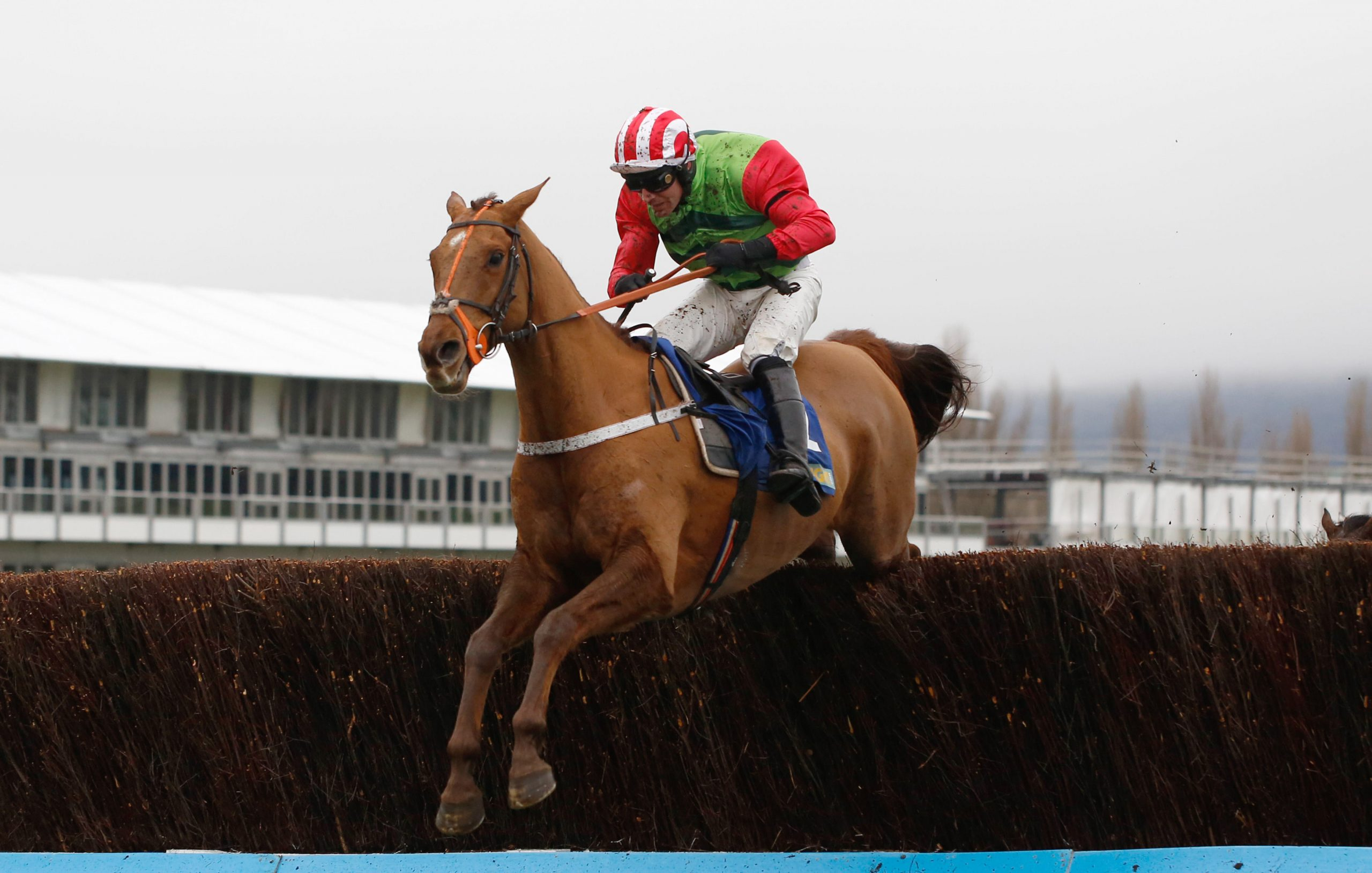 Definitly Red Aintree